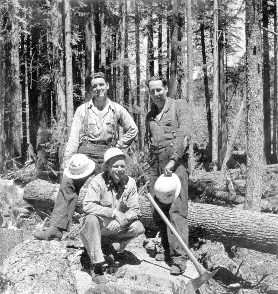 Kew Gardens Flagpole Fallers:George Cross (left), John Ulinder (Bull Bucker) and Vic Rodman (right)